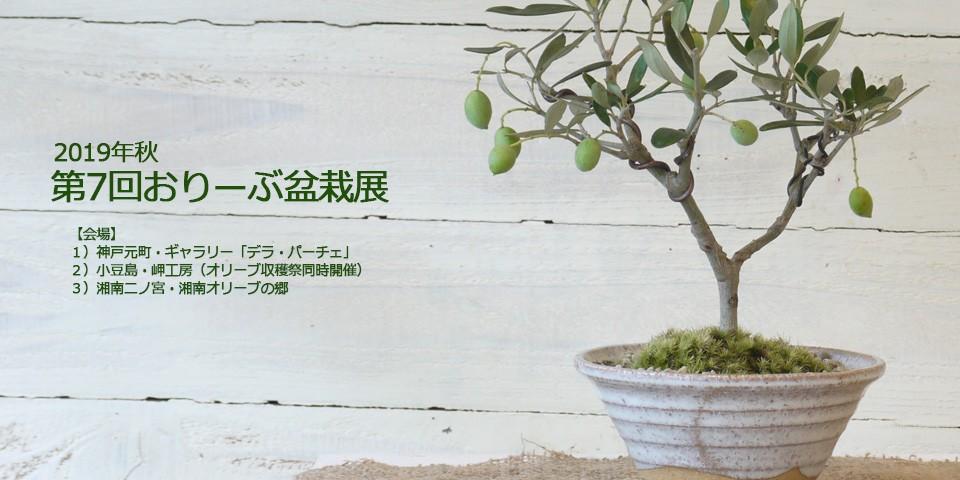 2019年おりーぶの盆栽展