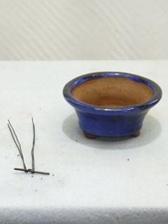 鉢網セットし、木を固定するための細い針金を準備