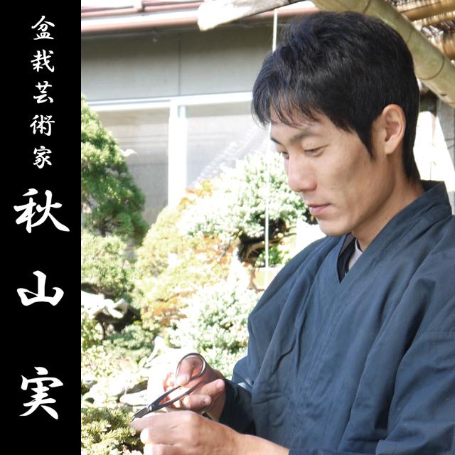 盆栽芸術家・秋山実氏