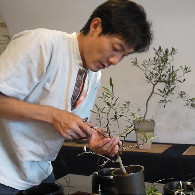 盆栽作家・秋山 実
