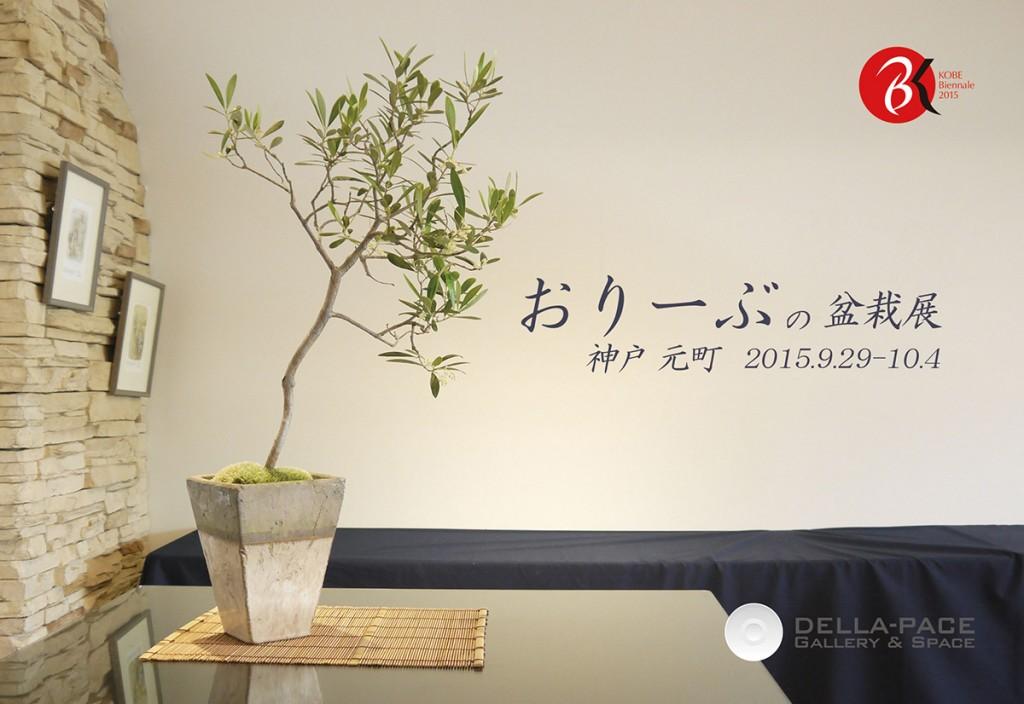 2015◆第3回オリーブの盆栽展・神戸 元町会場