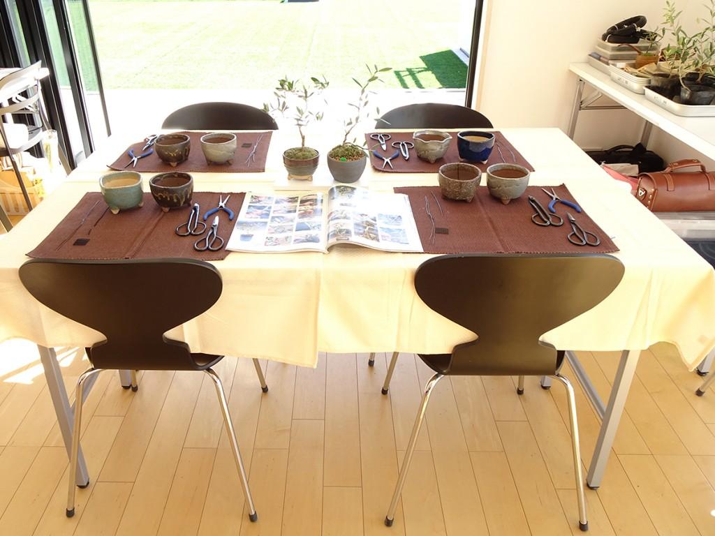 愛知一宮でのオリーブの盆栽教室