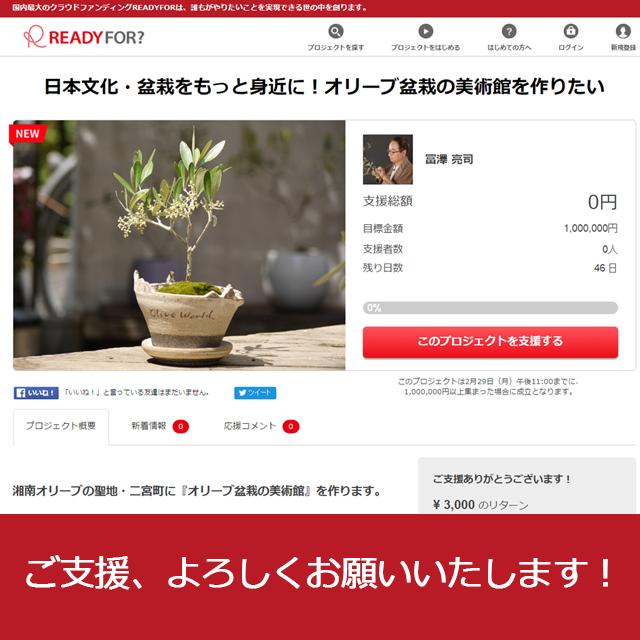 湘南オリーブの聖地・二宮にオリーブ盆栽美術館を作るプロジェクト始動!